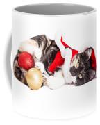 Adorable Christmas Calico Santa Kitty Coffee Mug