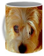 Adorable Daisy Coffee Mug