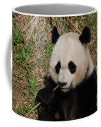 Adorable Giant Panda Eating A Green Shoot Of Bamboo Coffee Mug
