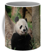 Adorable Giant Panda Eating A Shoot Of Bamboo Coffee Mug