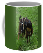 Adorable Goat In A Field With Thick Green Grass Coffee Mug