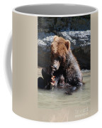 Adorable Grizzly Bear Playing With A Maple Leaf While Sitting In Coffee Mug