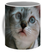 Adorable Kitty  Coffee Mug