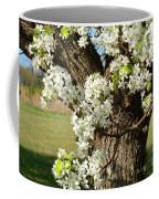 Adorned With Beauty Coffee Mug