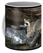 Adult Raccoon Hunting Coffee Mug