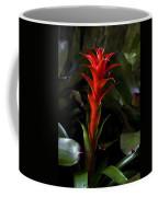 Aechmea  Bromeliad Flower Coffee Mug