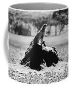 Africa: Cheetah Coffee Mug