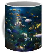 African Cichlids 2 Coffee Mug