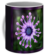 African Daisy - Hdr Coffee Mug