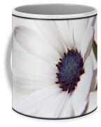 African Daisy  Sky And Ice Coffee Mug