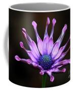 African Daisy Portrait Coffee Mug