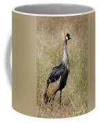 African Grey Crowned Crane Coffee Mug