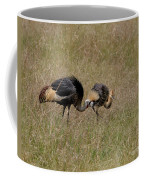 African Grey Crowned  Crane With Chick Coffee Mug