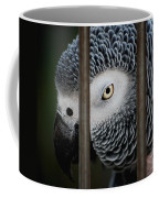 African Grey Coffee Mug