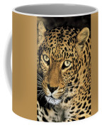 African Leopard Panthera Pardus Captive Wildlife Rescue Coffee Mug
