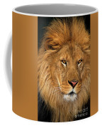 African Lion Panthera Leo Wildlife Rescue Coffee Mug