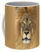 African Lion Portrait Wildlife Rescue Coffee Mug