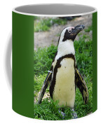 African Penguin Coffee Mug