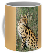 African Serval In Ngorongoro Conservation Area Coffee Mug