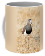 African Wattled Lapwing Vanellus Coffee Mug