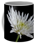 After Rain Coffee Mug
