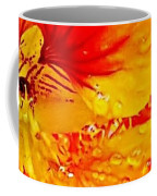 After The Rain Color Coffee Mug
