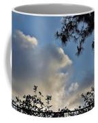 After The Rain I Coffee Mug