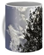After The Rain V Coffee Mug
