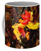 After The Rains Of Autumn Coffee Mug