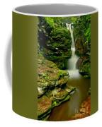 Afternoon At Adams Falls Coffee Mug