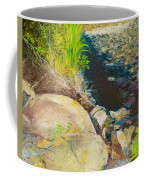 Afternoon Beside The Lane Cove River Coffee Mug