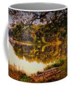 Afternoon View Argyle Lake Illinois Coffee Mug