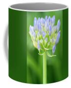 Agapanthus Africanus Flower Coffee Mug