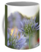 Agapanthus Africanus - Lily Of The Nile Coffee Mug