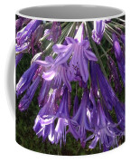 Agapanthus Flowers In Purple - New And Old Coffee Mug