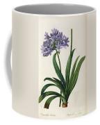 Agapanthus Umbrellatus Coffee Mug