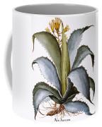 Agave, 1613 Coffee Mug