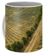 Agave Fields Coffee Mug