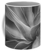 Agave Shadows And Light Coffee Mug