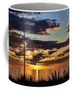 Agave Sunset Coffee Mug
