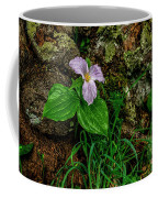 Aged White Trillium With Raindrops Coffee Mug