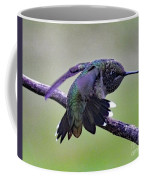 Aggressive Behavior - Ruby-throated Hummingbird Coffee Mug