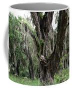 Aging Oak Tree Coffee Mug