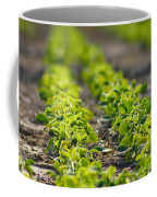 Agriculture- Soybeans 1 Coffee Mug