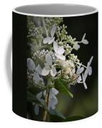 Ailanthus Webworm Moth 2 Coffee Mug