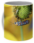 Ailanthus Webworm Moth #6 Coffee Mug