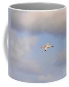 Airborne Ibis Coffee Mug