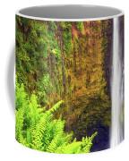 Akaka Falls Coffee Mug