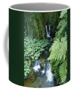 Akaka Falls Stream Coffee Mug