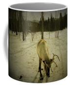 Alaskan Morning Coffee Mug